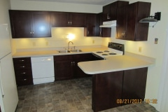 10-kitchen-cabinet-refacing-bourdeaux-finish-under-cabinet-lighting-maryland-heights-mo